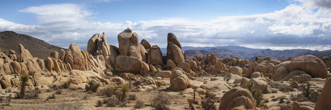 Joshua Tree Panorama. A panoramic view of the White Tank campground in Joshua Tree National Park stock images