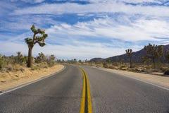 Joshua Tree Road Lizenzfreies Stockfoto