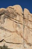 Joshua Tree Rock Climber Fotos de archivo
