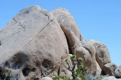 Joshua Tree Rock Formation Stock Images