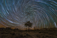Joshua Tree Spiral Star Trails Image stock