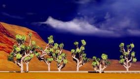 Joshua trees on desert Stock Photos