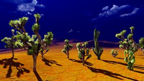 Joshua trees on desert Royalty Free Stock Photo