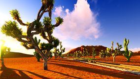 Joshua trees and railroad Royalty Free Stock Image