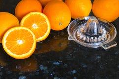 Jospressen med apelsiner Royaltyfri Bild