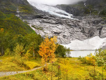 Jostedal National Park Glacier Norway Royalty Free Stock Photography
