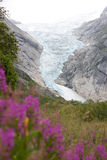 Jostedalsbreen Royalty Free Stock Image