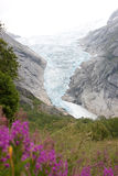 Jostedalsbreen Royalty Free Stock Photos
