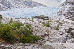 Jostedalsbreen glacier in Norway Royalty Free Stock Images