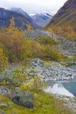 jostedalsbreen nationalparken Fotografering för Bildbyråer