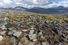 Jotunheimen Nationaal Park, Noorwegen Stock Afbeelding