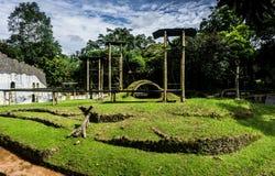 Jouant le parc pour l'orang-outan utan ou le singe avec le beau paysage et le ciel nuageux comme fond Jakarta rentré par photo Photos libres de droits