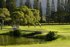Jouer au golf à la ressource de Princeville Photo stock