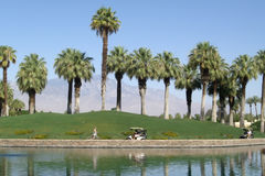 Jouer au golf à la ressource tropicale Images libres de droits