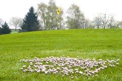 Jouer au golf Image libre de droits