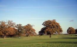 Jouer au golf d'automne Images libres de droits