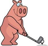 Jouer au golf de porc de bande dessinée illustration stock