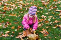 Jouer avec des feuilles photo libre de droits