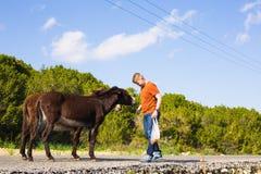 Jouer de jeune homme et ânes sauvages d'alimentation, Chypre, région sauvage de protection d'âne de parc national de Karpaz Photos libres de droits