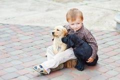 Jouer de petit garçon extérieur avec deux chiots d'un Labrador Image libre de droits