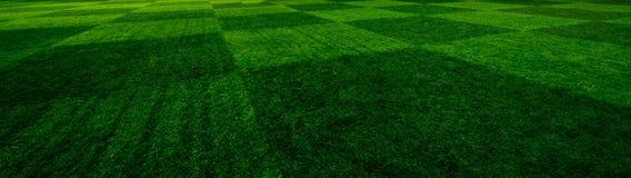 Jouer le football dans le jeu Photo libre de droits