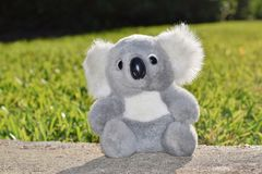 Jouet bourré de koala se reposant en soleil chaud dehors Images libres de droits