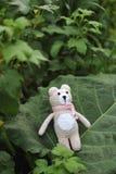 Jouet d'Amigurumi TeddyBear Image stock
