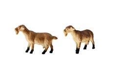 Jouet d'isolement de chèvre Photos stock