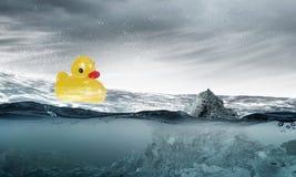 Jouet de canard Images libres de droits