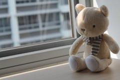 Jouet de minou de chaton se reposant par la fenêtre dans les ombres Image libre de droits