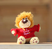 Jouet de peluche dans la veste tricotée par rouge Images libres de droits