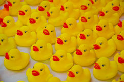Jouet de plastique de canard Images libres de droits