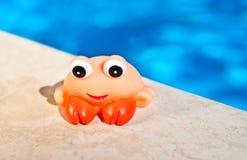 Jouet de poissons de jabot près de la piscine Photo libre de droits