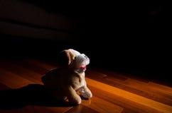Jouet de poupée de chien de peluche se reposant avec obéissance Photos stock