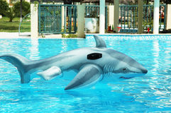 Jouet faux de requin dérivant dans l'eau claire Photographie stock