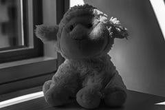 Jouet monochrome d'agneau se reposant par la fenêtre dans les ombres Images stock