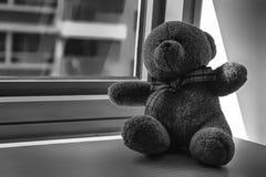 Jouet monochrome d'ours se reposant par la fenêtre dans les ombres Image libre de droits