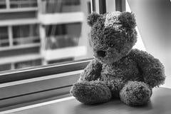 Jouet monochrome d'ours se reposant par la fenêtre dans les ombres Image stock