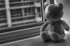 Jouet monochrome de minou de chaton se reposant par la fenêtre dans les ombres Images libres de droits