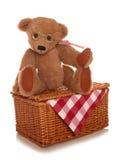 Jouet mou de pique-nique d'ours de nounours Photo stock