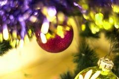Jouet rouge d'arbre de Noël sur une fin de branche Photo libre de droits