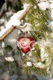 Jouet rouge de coeur avec la dentelle sur une branche de pin dans la forêt neigeuse Photographie stock
