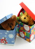 Jouets bourrés d'ours faisant une pointe hors des cadres de Noël Images libres de droits