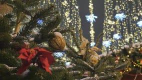 Jouets de Noël accrochant sur les branches du sapin Décoration de fête de la ville Hors des lumières de fête de foyer clips vidéos