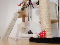 Jouets pour des chats image stock