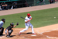 Joueur Albert Pujols de cardinaux de MLB St Louis Images libres de droits