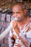 Joueur australien indigène de Didgeridoo photographie stock libre de droits
