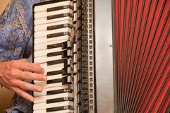 Joueur d'accordéon Photographie stock libre de droits