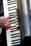 Joueur d'accordéon image libre de droits