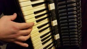 Joueur d'accordéon Photo stock